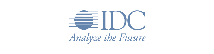 IDC analize the future ecommerce software