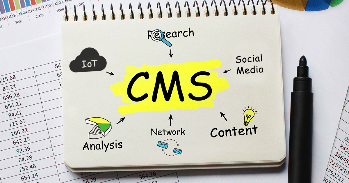 CMS sketch pad image