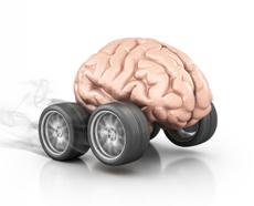 A brain on wheels