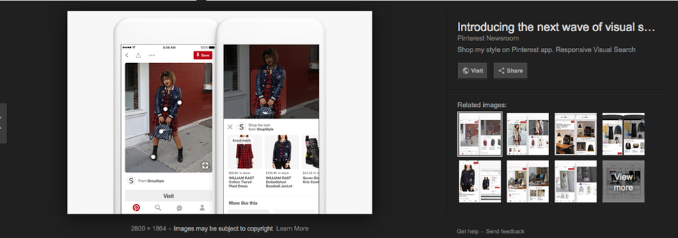 The Rise of Visual Search_Pinterest Newsroom_Get Elastic