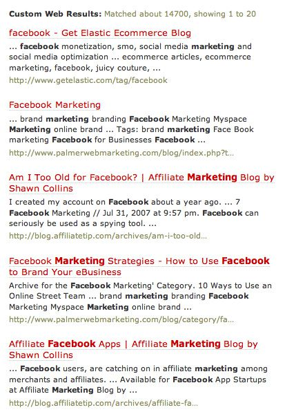 Rollyo Search Results for Facebook Marketing