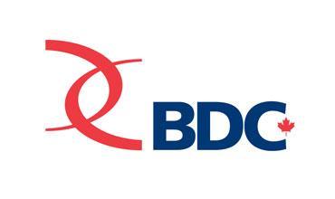 BDC Venture CAPItal logo
